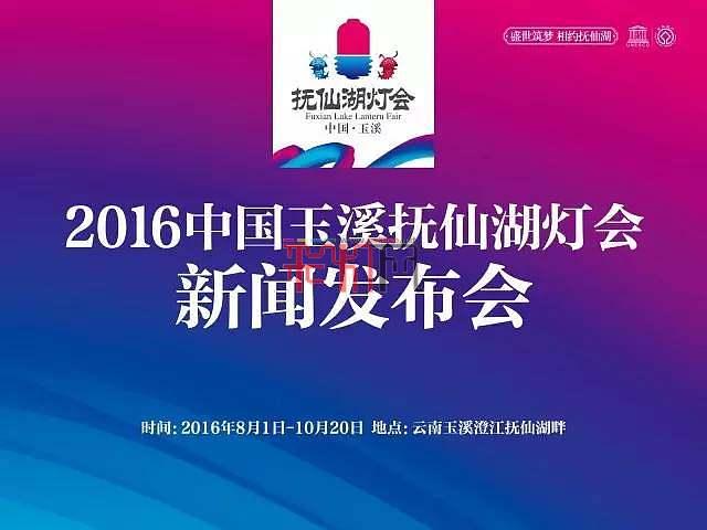 2016中国玉溪抚仙湖灯会