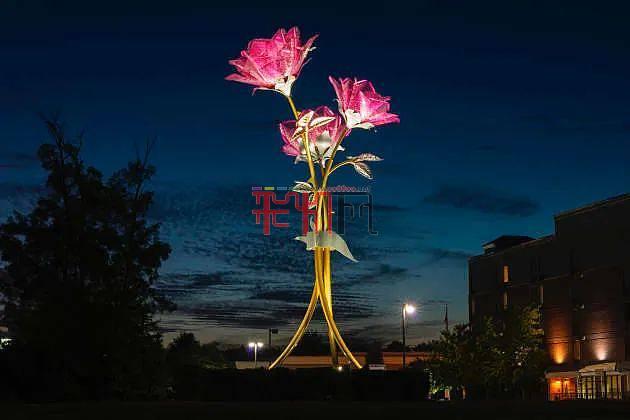 灯光艺术之花 粉红色的玫瑰