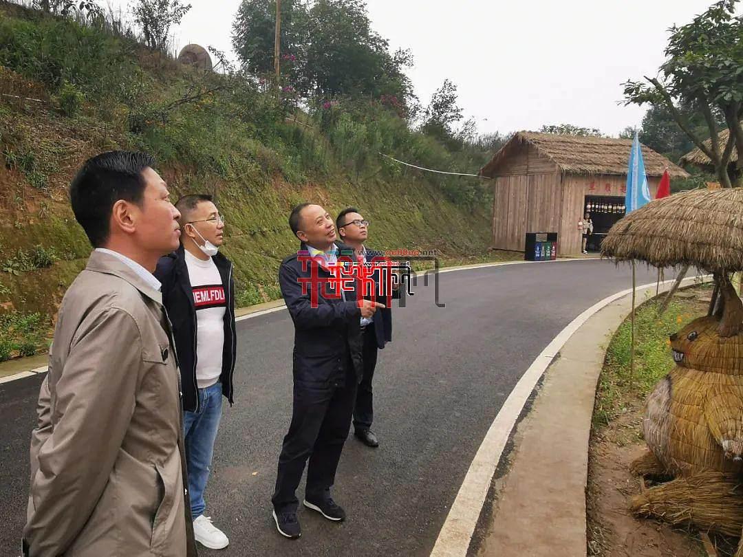 自贡市委副书记、市长何树平  视察彩灯之乡第四届丰收草雕节