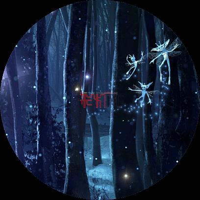 《哈利·波特:禁林体验》户外森林中的夜间沉浸式体验